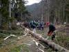 maibaum_2012_069